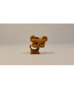 Littlest Pet Shop - York