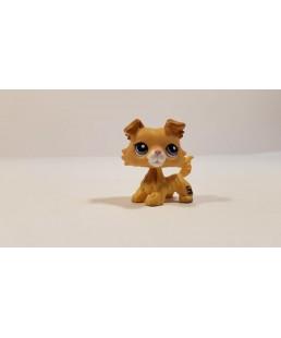 Littlest Pet Shop - Collie